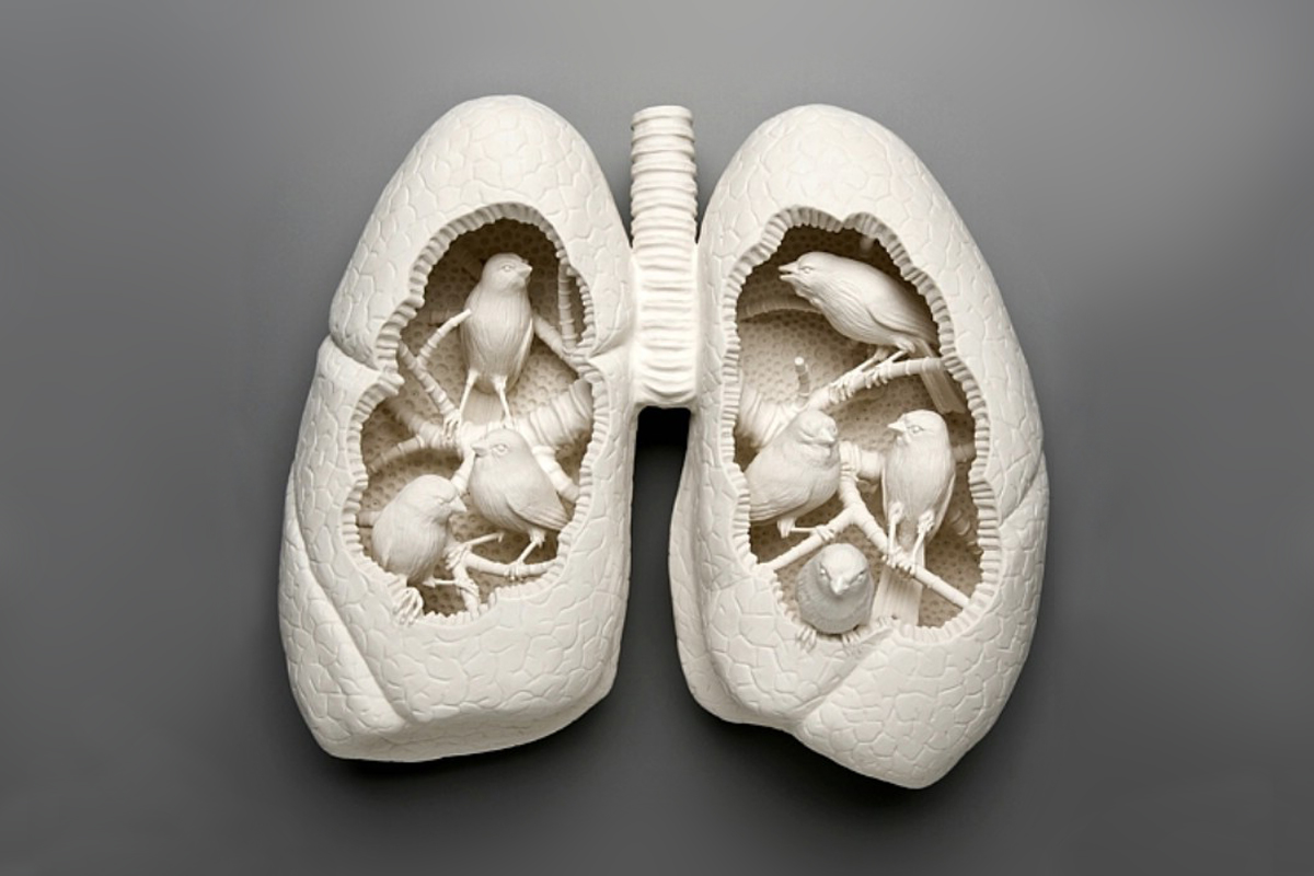 "Kate MacDowell ""Canary 3"""
